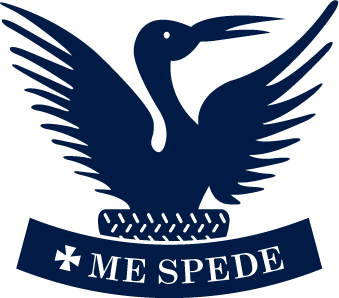 Stamford Endowed School Spede Bird Logo