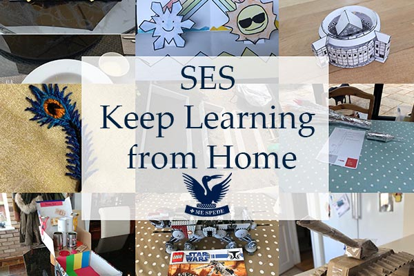 SES at Home