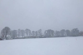 Stamfordians in the Snow
