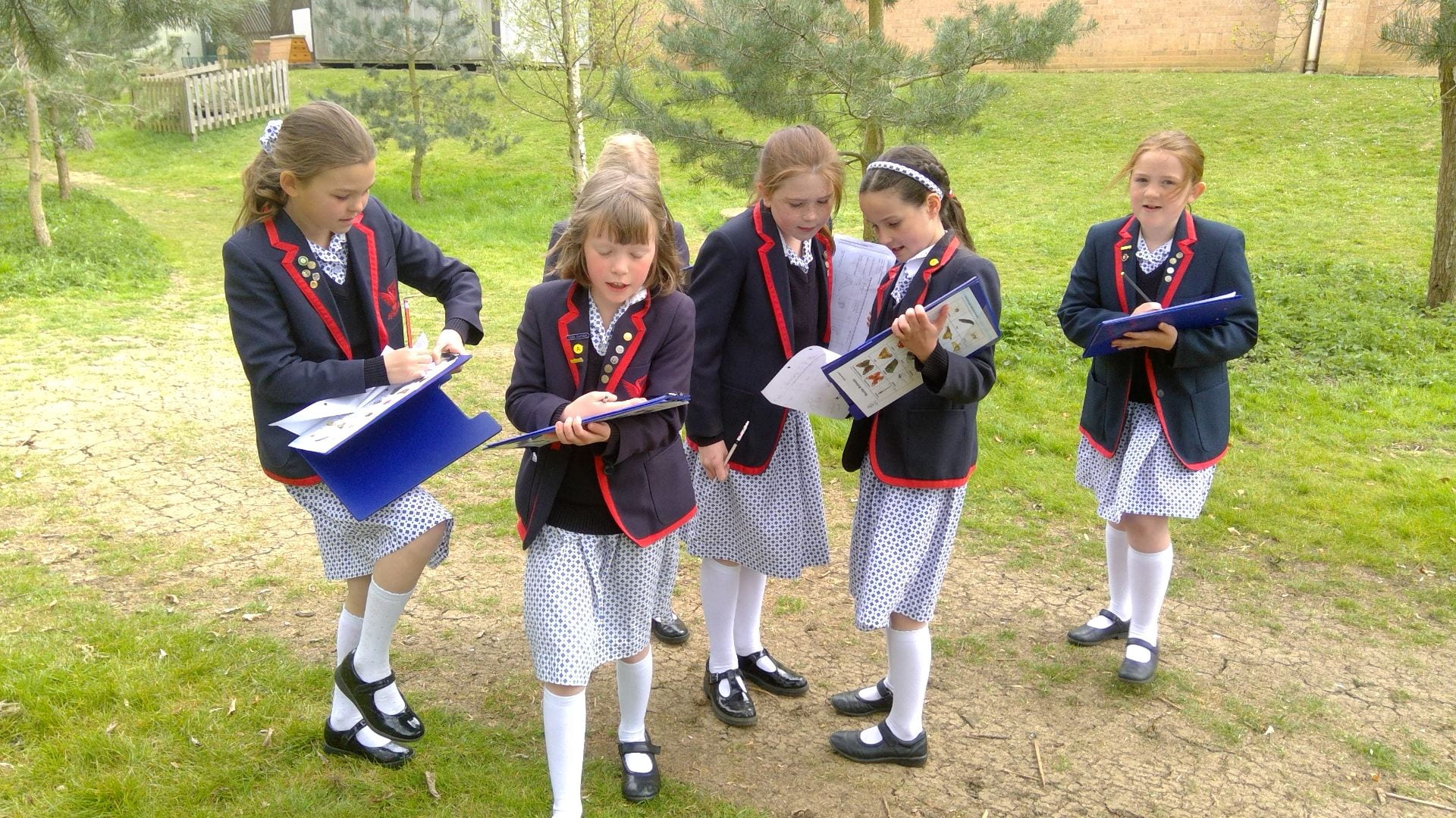 Children at SJS investigate outdoors